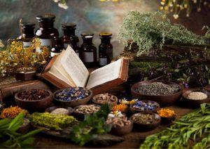 מתנות מהטבע: רעיונות למתנות בקונספט של טבע ורפואה טבעית